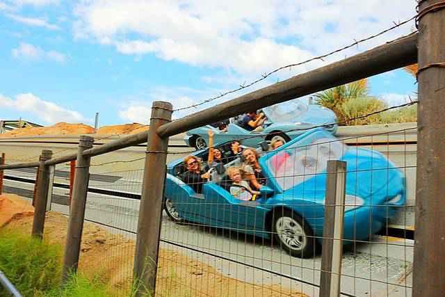 Disney California Adventure (9)
