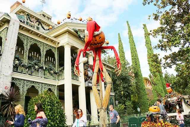 Disneyland California (10)