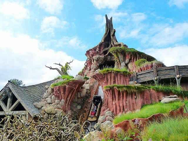 Disneyland California (15)