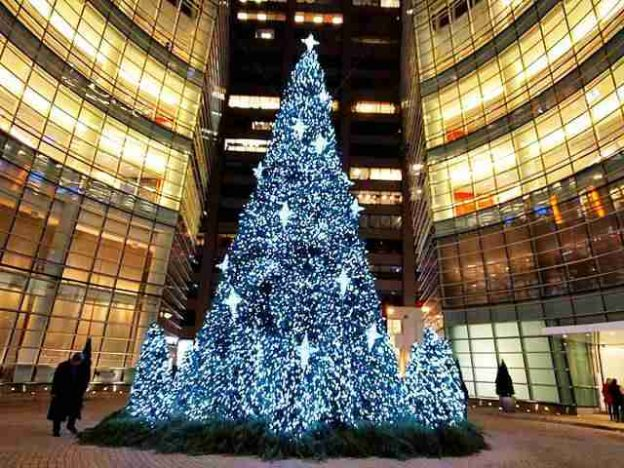 Bloomberg NY