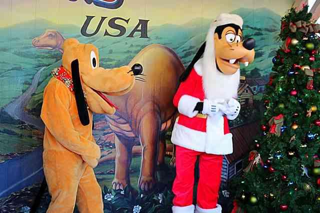 Disney's Animal Kingdom (6)