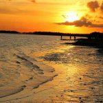 Everglades National Park (10)
