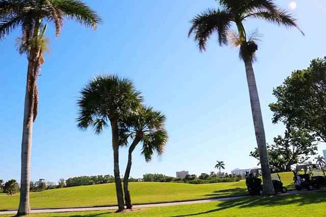 Miami Beach (15)