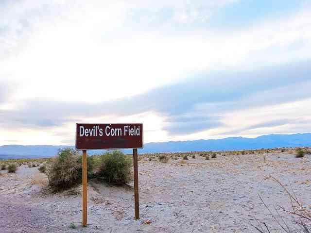 Death Valley (19)