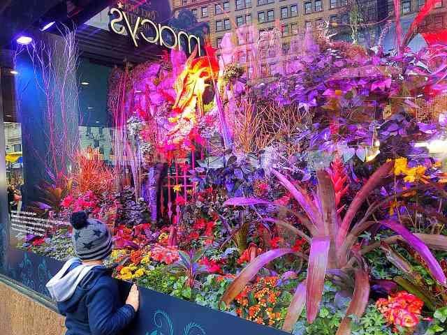 Macy's Flower Show (23)