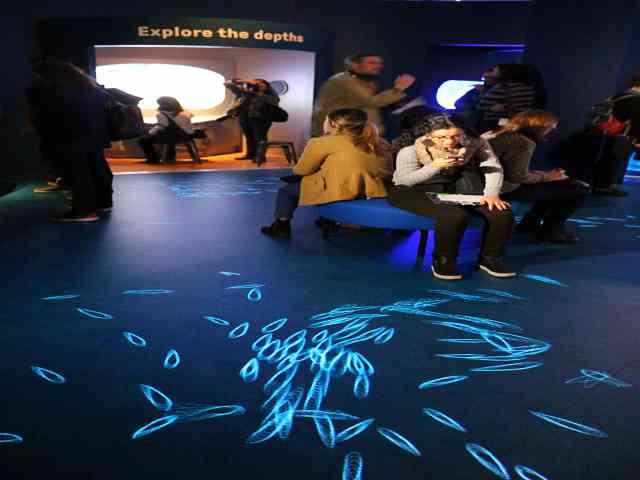 UNSEEN OCEANS AMNH (12)