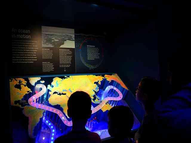 UNSEEN OCEANS AMNH (17)