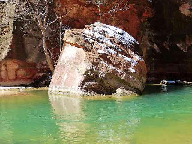 Zion National Park (17)