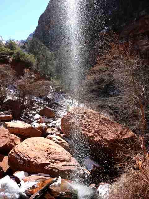 Zion National Park (2)