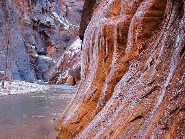 Zion National Park (20)