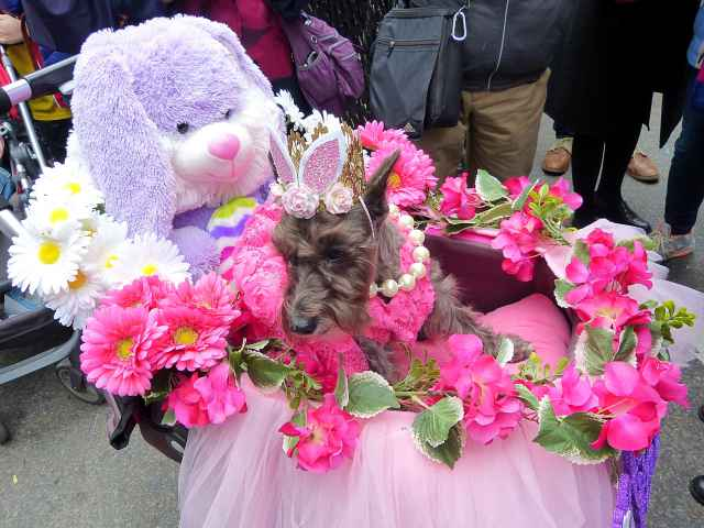 Easter Parade (9)