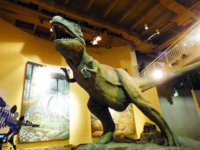 Fernbank Museum of Natural History (7)