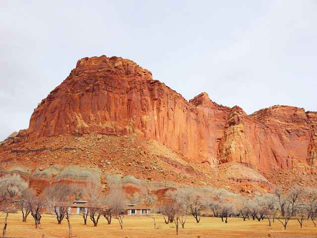 Capitol Reef National Park (1)