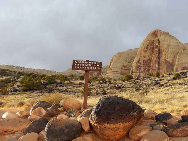 Capitol Reef National Park (7)