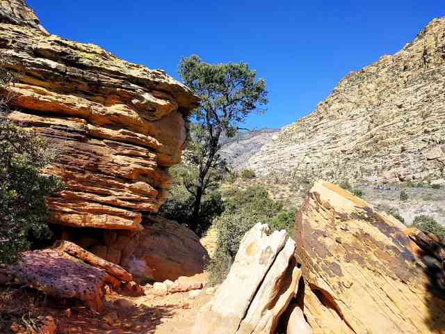 Red Rock Canyon (16)