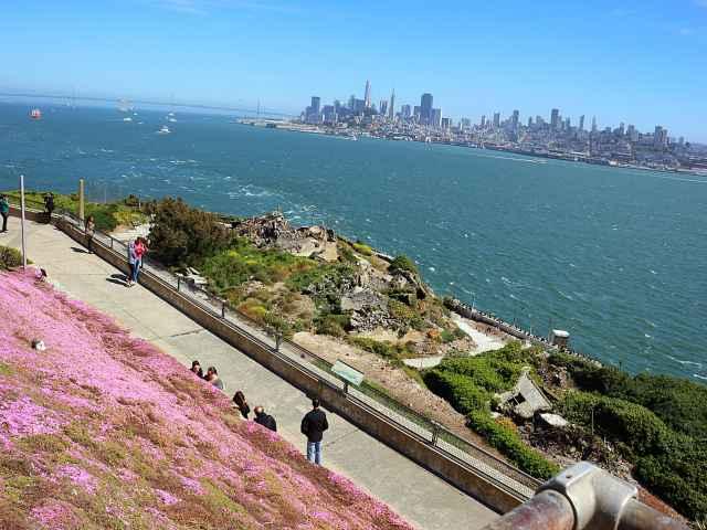 Alcatraz (15)