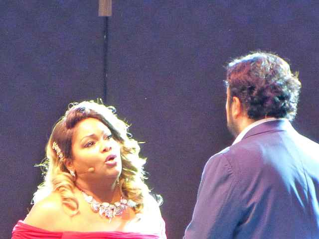 Met Opera in Central Park (6)