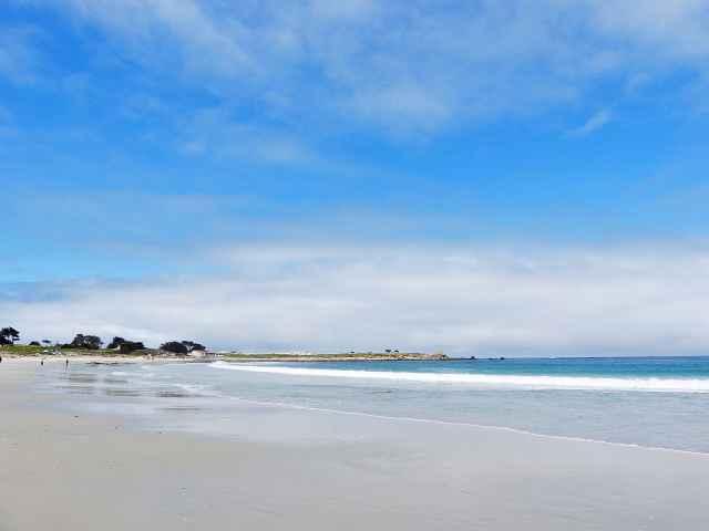 Monterey (28)