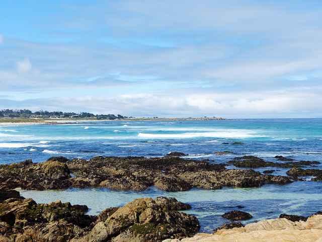 Monterey (33)