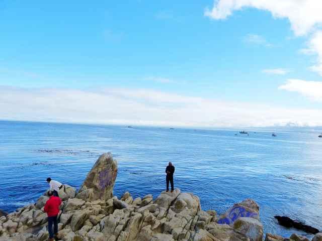 Monterey (41)