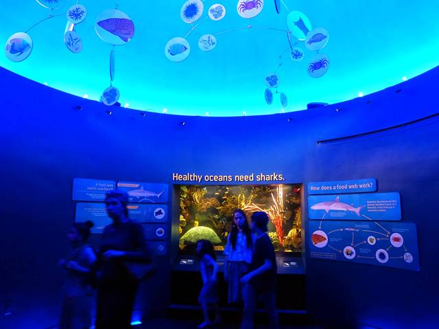 New York Aquarium (18)
