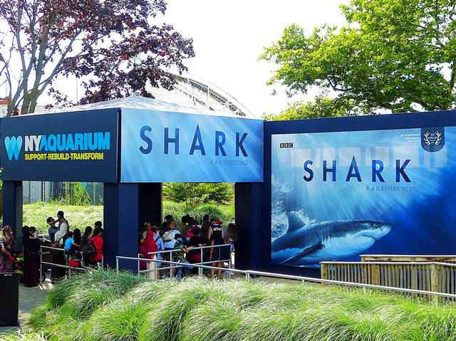 New York Aquarium (24)