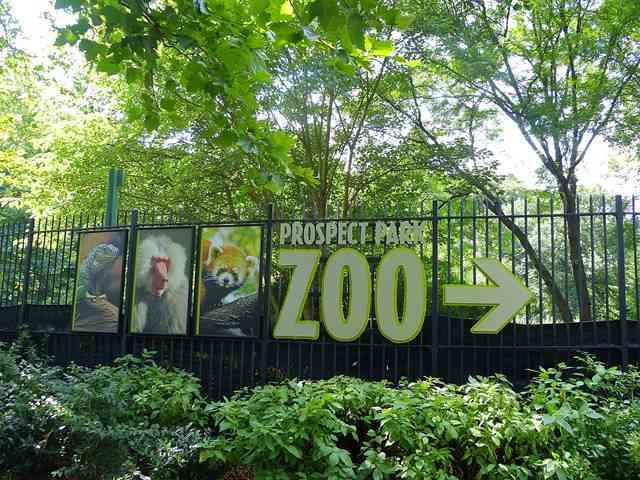 Prospect Park (16)