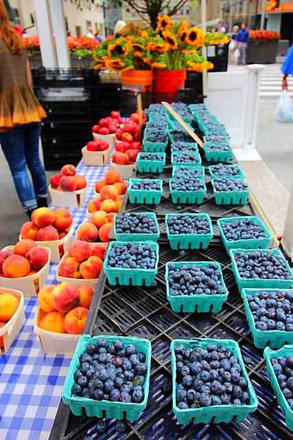 Farmers Market Rockefeller Center (2)