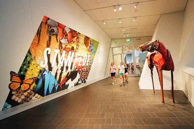 Denver Art Museum (12)