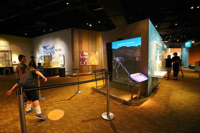 Denver Museum of Nature and Science (14)