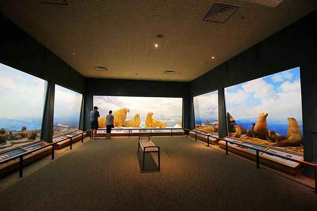 Denver Museum of Nature and Science (2)