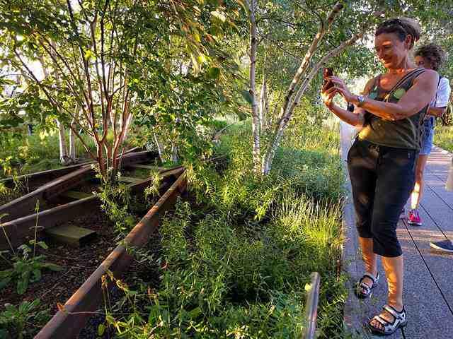 High Line NY (14)