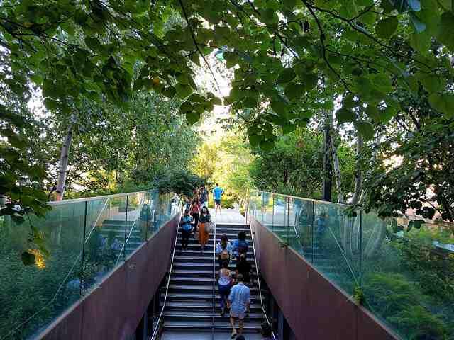 High Line NY (17)