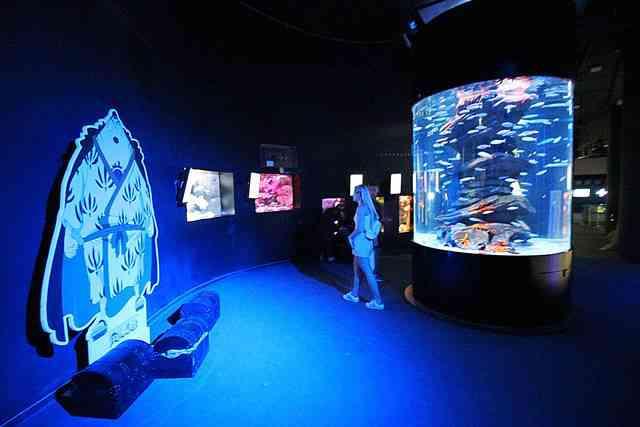 Aquarium de Paris (12)