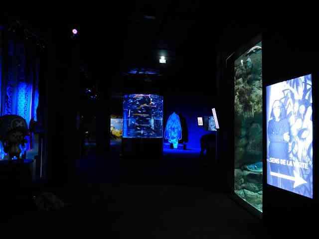 Aquarium de Paris (13)