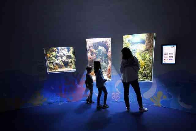 Aquarium de Paris (2)