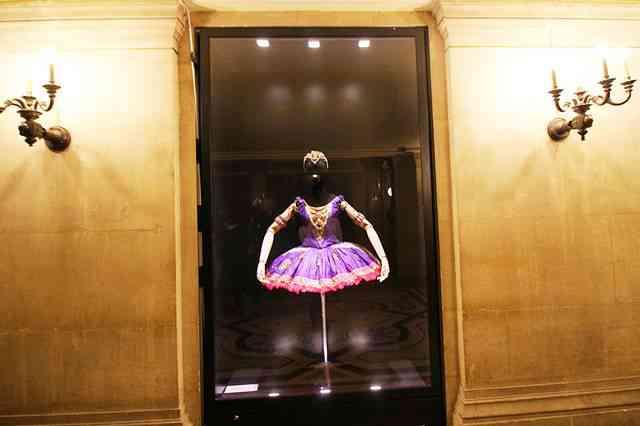 Palais Garnier (14)
