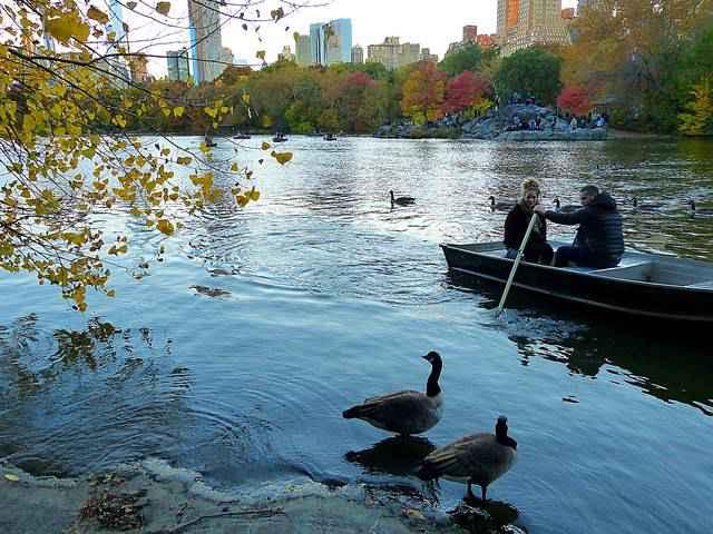 Central Park (11)