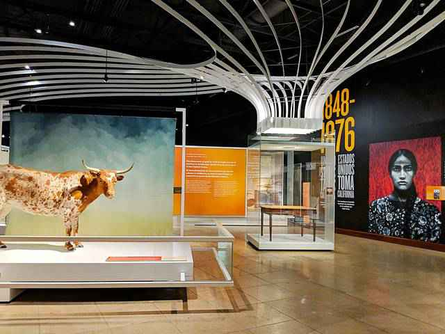 Natural History Museum of Los Angeles (17)