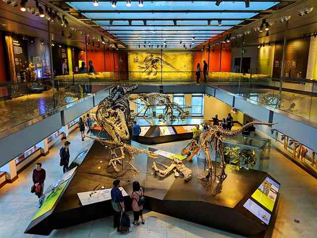 Natural History Museum of Los Angeles (25)
