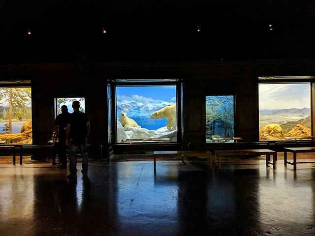 Natural History Museum of Los Angeles (9)