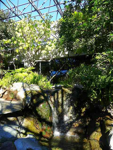 The La Brea Tar Pits and Museum (16)