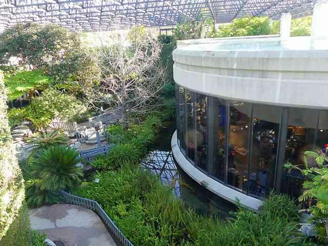 The La Brea Tar Pits and Museum (2)