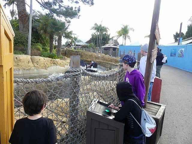 SeaWorld San Diego (44)