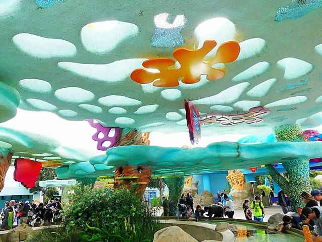 SeaWorld San Diego (9)