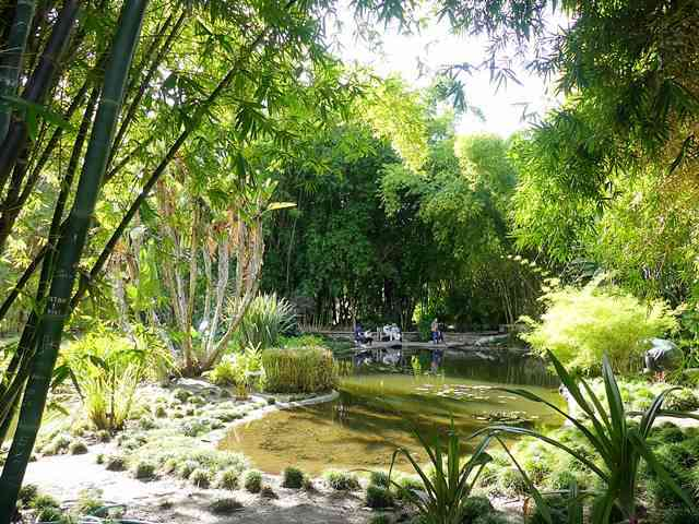 The Huntington Library (40)
