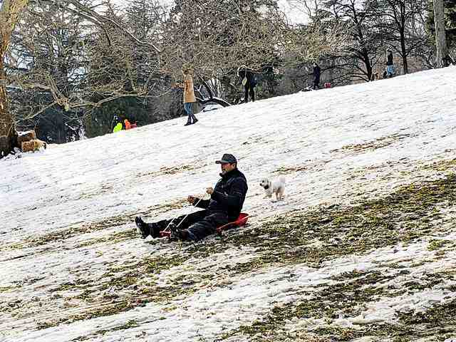 Central Park in Snow (12)