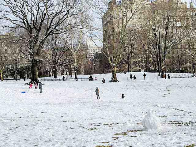Central Park in Snow (14)