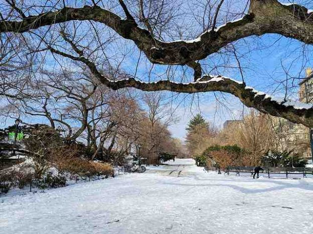 Central Park in Snow (2)
