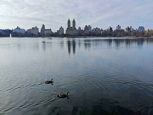 Central Park in Snow (4)